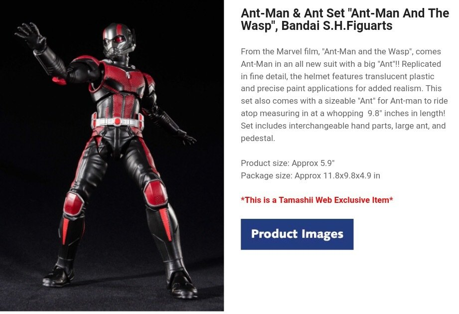 """""""ANT-MAN and the Wasp"""" S.H. Figuarts Release date October 2018"""