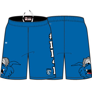 DuBois Dream Dreamy Game Shorts