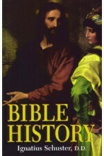 Bible History - Schuster