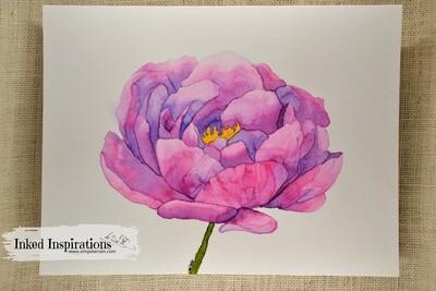 Peony - Watercolor