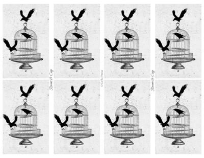 Ravens Cage - PDF
