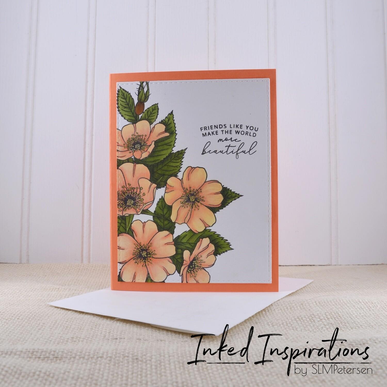 Friends Like You - Peach Roses