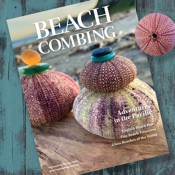 Beachcombing Magazine