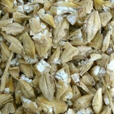 Crushed Barley - Tonne