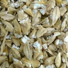 Crushed Barley - 10kg