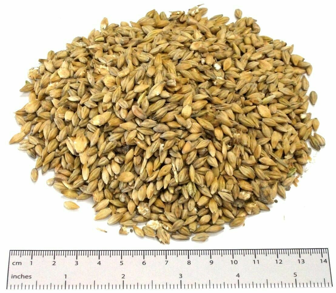 Whole Barley - Tonne