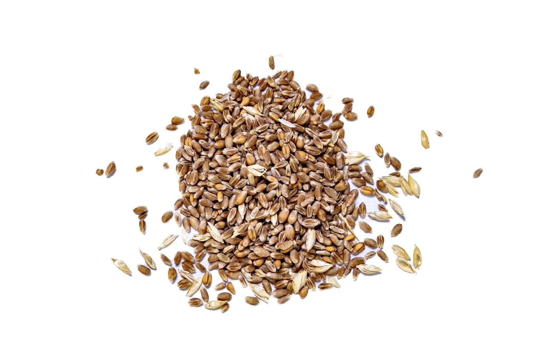 Whole Wheat - 10kg