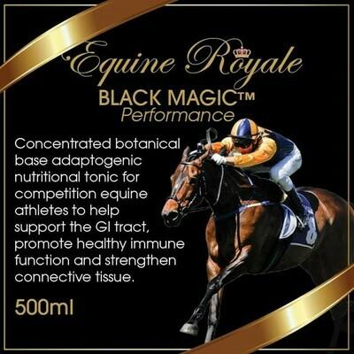 Black Magic Broad - Equine Royale