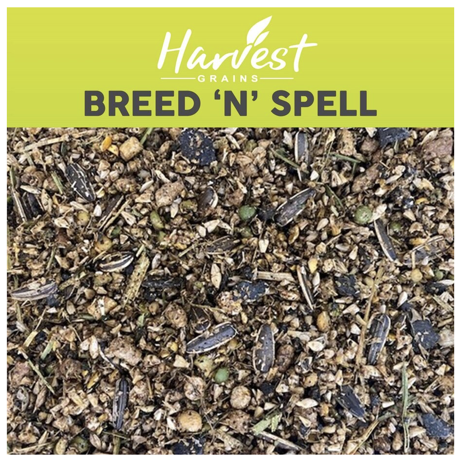 Breed & Spell