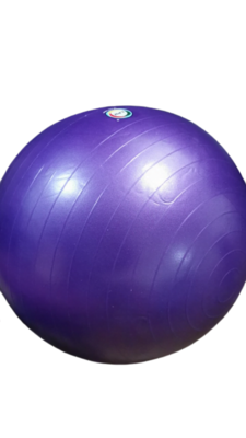 "LPS -Gym Ball 30"""