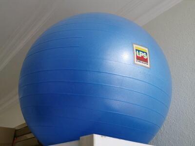 LPS -Gym Ball 26''