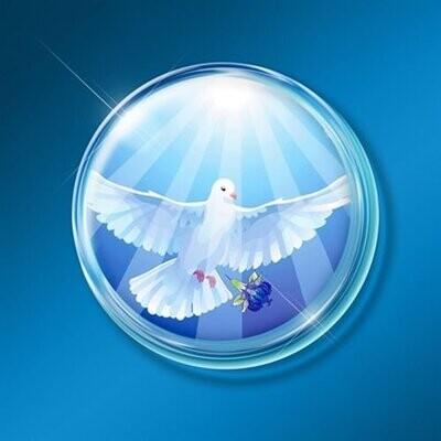 Mega Technology Shield: Wings of Peace