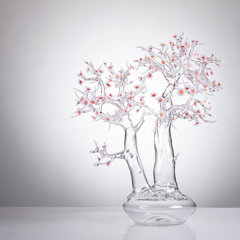Blossom Bonsai 2019 #03
