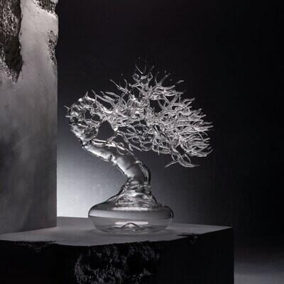 Glass Bonsai 2020 #04