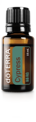 絲柏精油 Cypress 15ML