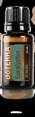 尤加利精油  Eucalyptus 15ML
