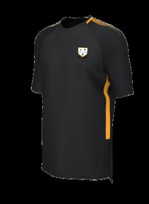 Ashtead FC 2020 Training T-shirt