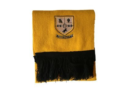 Ashtead FC Supporters Scarf