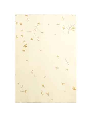 Бумага ручной работы, непальская с вкраплениями натуральных цветов А3