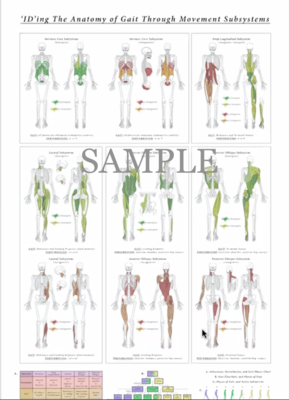 ID Gait and Movement Subsystems Poster