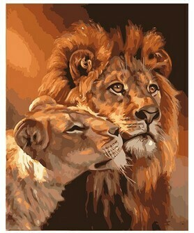 Paint by Numbers Kit Lion and Lioness 40 x 50cm