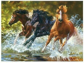 Paint by Number Kit Horses in water 40 x 50cm