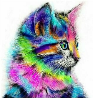 Paint by Numbers Psychedelic kitty 40 x 50cm