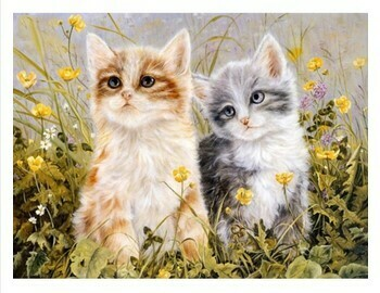 Paint by Numbers Two kittens 40 x 50cm