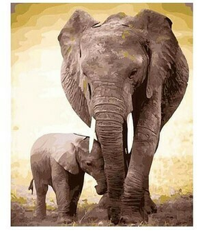 Paint by Numbers Kit Elephants 40 x 50cm