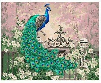 Paint by Numbers Peacock on fence 40 x 50cm