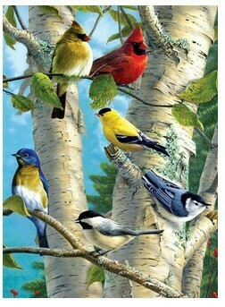 Paint By Numbers Kit Birds in tree 40 x 50cm