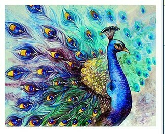 Paint by Numbers Peacock 40 x 50cm