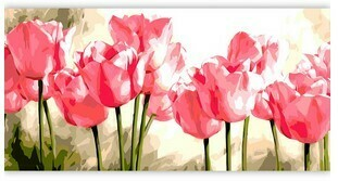 Paint by Numbers Pink Tulips 40 x 50cm