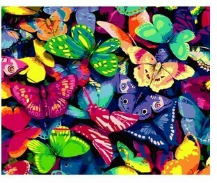 Paint By Numbers Kit Butterflies 40 x 50cm