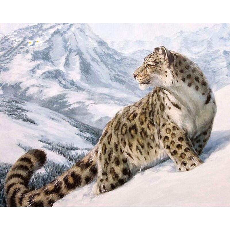 Paint by Numbers Snow Leopard 40 x 50cm
