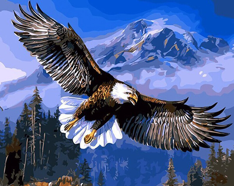 Paint by Numbers Soaring Eagle 40 x 50cm