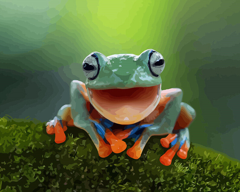 Paint by Numbers Smiling Frog 40 x 50cm