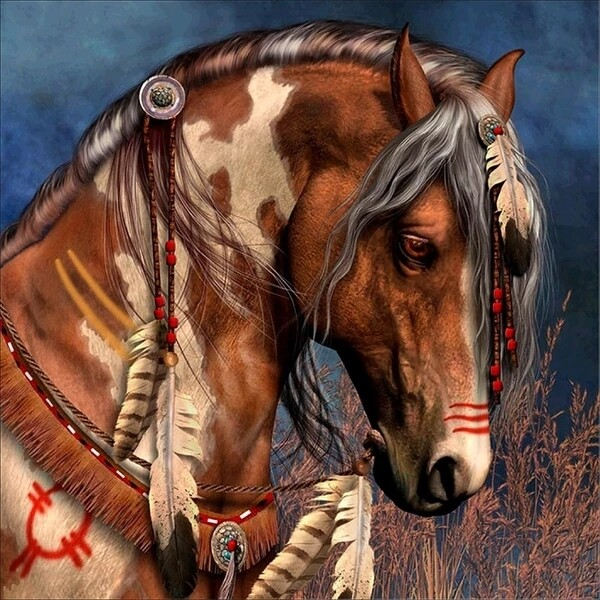 Paint by Diamond Kit Apache Horse 40 x 40cm