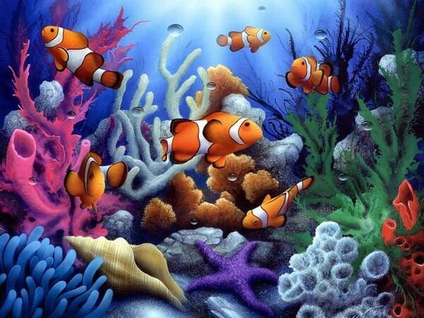Paint by Diamond Kit Clowns 30 x 40cm