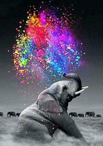 Paint by Diamond Kit Elephant Splash 40 x 50cm