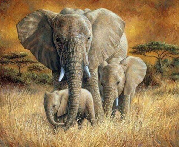 Paint by Diamond Kit Elephants on Safari 40 x 50cm