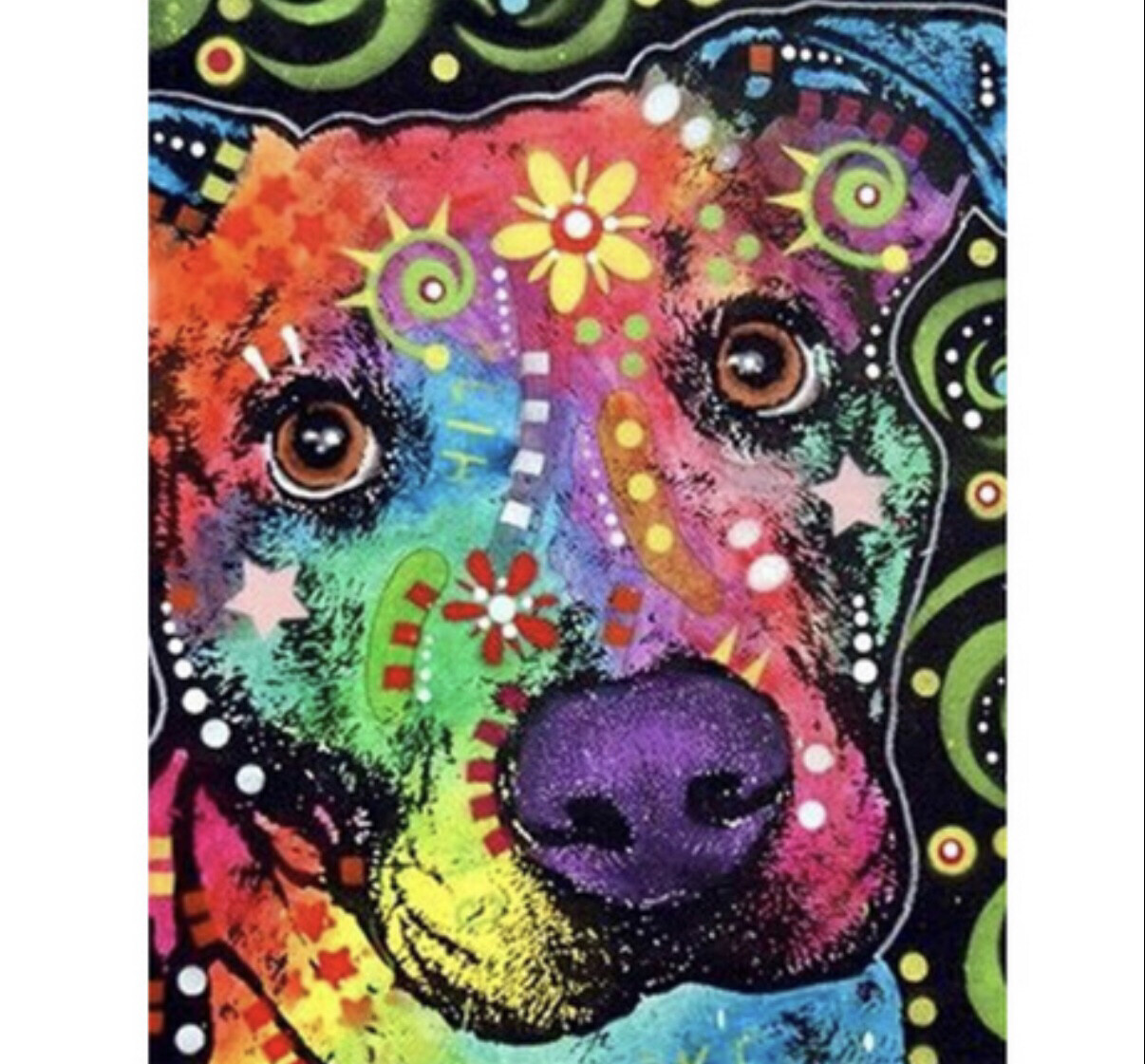 Paint by Numbers Kit Funky Dog 40 x 50cm