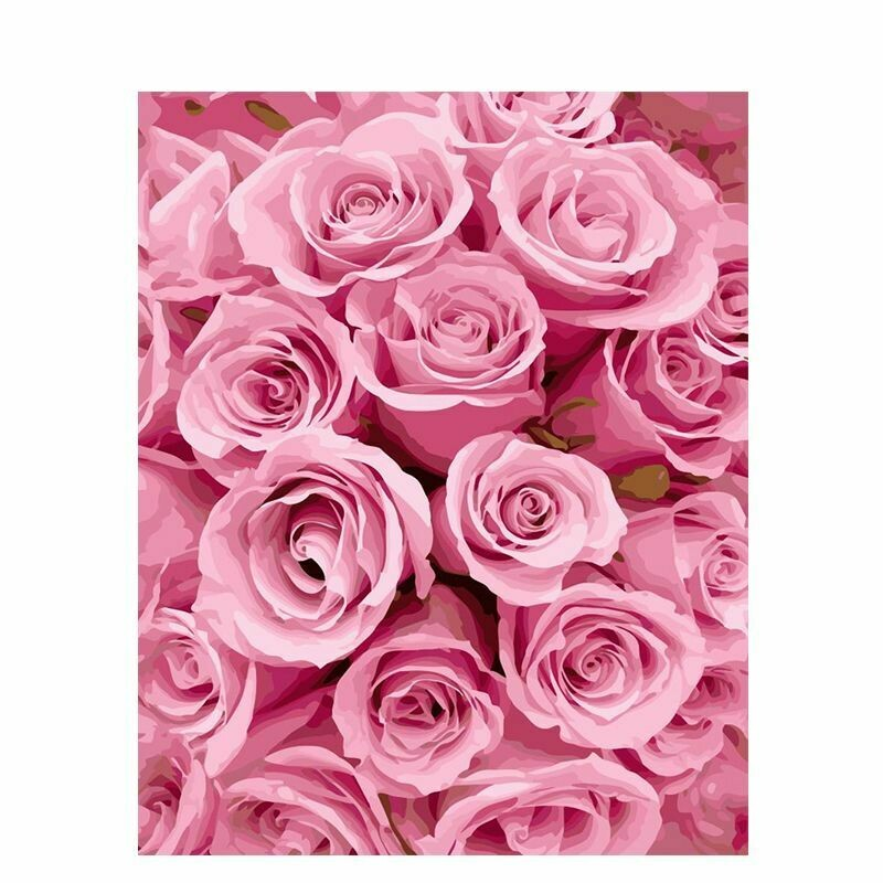Paint by Number Kit Pink Rose Bed 40 x 50cm