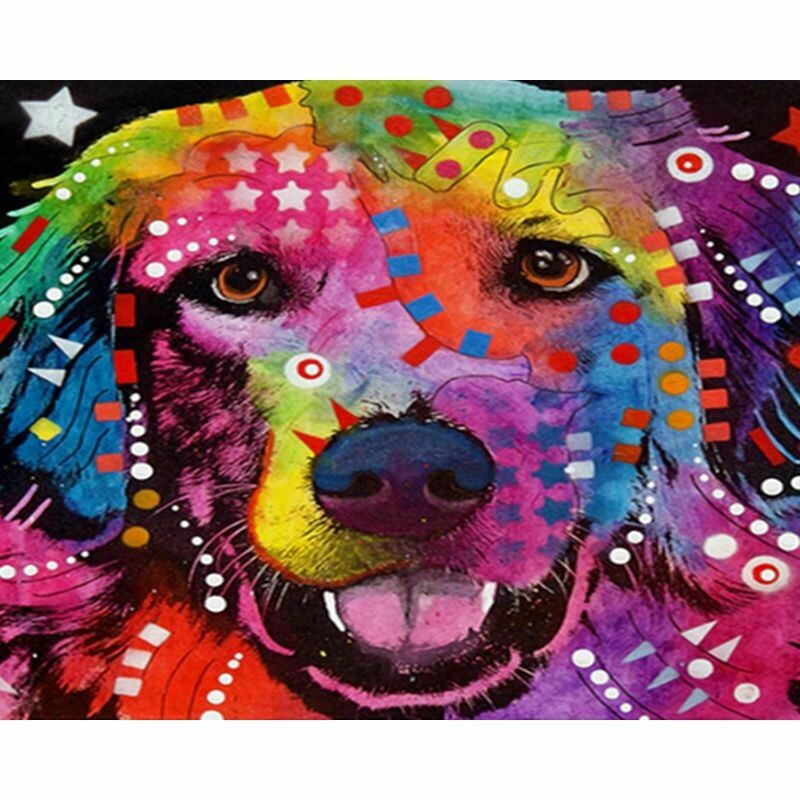Paint by Number Kit Funky Retriever 40 x 50cm