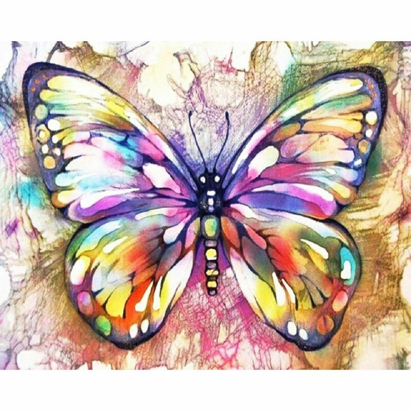 Paint by Number Kit Glass Butterfly 40 x 50cm