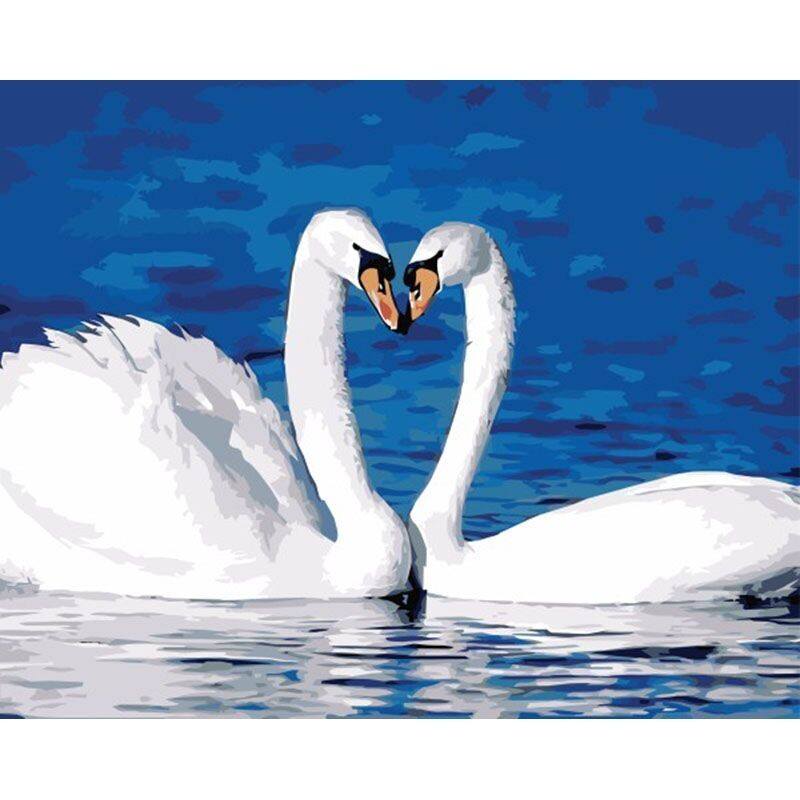 Paint by Number Kit Swans in Love 40 x 50cm