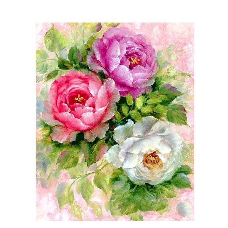 Paint by Number Kit Rose Bush 40 x 50cm