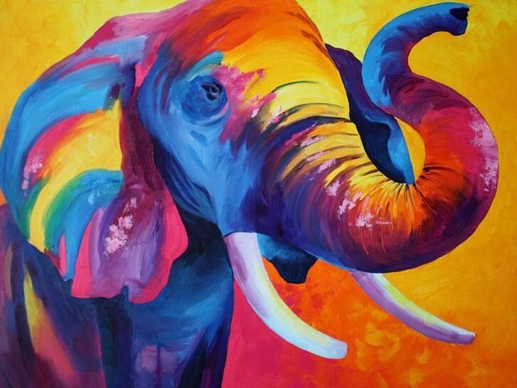 Paint by Number Kit Sunny Elephant 40 x 50cm