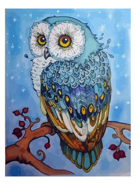 Paint by Number Kit Blue Owl 40 x 50cm