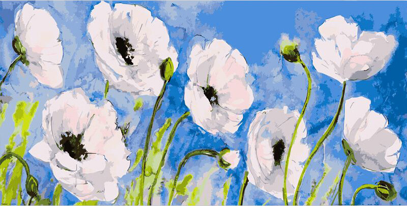 Paint by Number Kit Flower Field 40 x 50cm